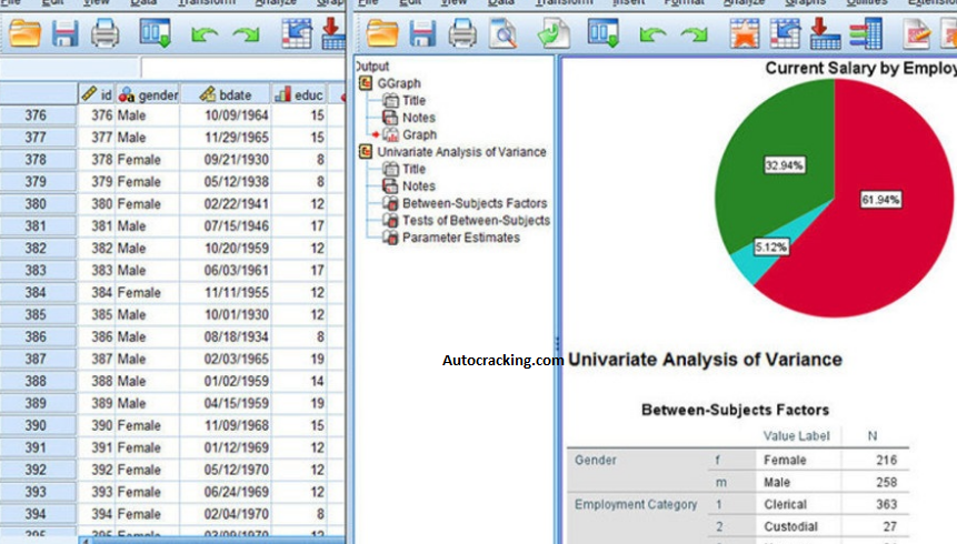 IBM SPSS Statistics Key